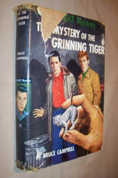 Image for A Ken Holt Mystery - The Mystery of the Grinning Tiger